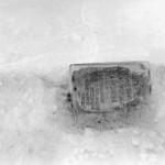 По следам во льдах, поиски экспедиции Русанова