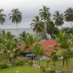 В дальних плаваниях. Камерун. Порт Дуала.