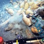 Подводные находки