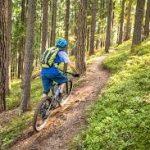 Отличия и критерии выбора горного велосипеда