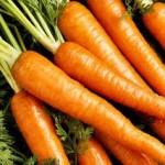 Морковь. Рецепты лечения болезней.
