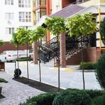 Квартира в Ирпени