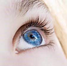 перспективы жёстких контактных линз